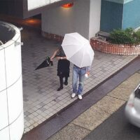 浮気調査で探偵が雨の日を嫌うのは傘で顔が隠れるから