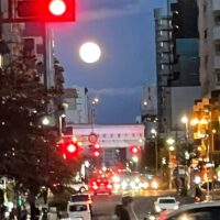満月と浮気の関係
